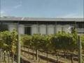 Watch Napa Valley Solar Wine Thumbnail
