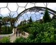 Watch Eden project thumbnail