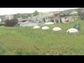 Watch Ballard Library Green Roof Part 1 Thumbnail
