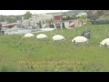 Watch Ballard Library Green Roof Part 2 Thumbnail
