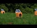 Watch Sun Boxes Musical Sculpture Thumbnail