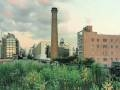 Watch Highline Park History Thumbnail