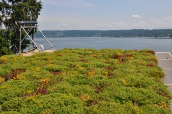 Bass Cove Zero Energy House Vegetated Roof with Solar Hot Water (Washington, USA)