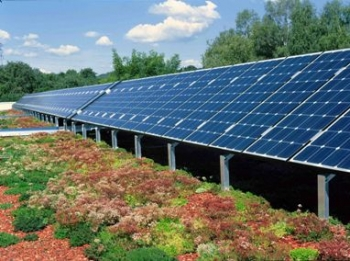 Unterensingen School Solar and Vegetated Roof