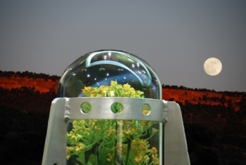 Lunar Greenhouse with Moon