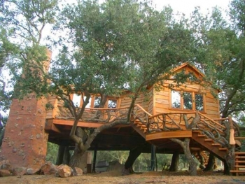 Treehouse Salvage Wood
