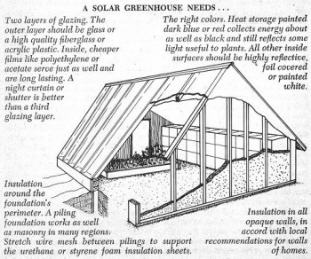 Solar Greenhouse Illustration Organic Framing