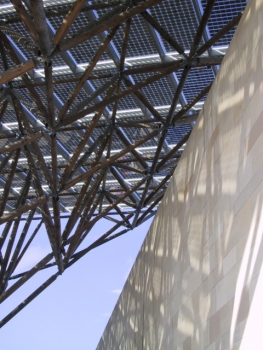 Earth Centre Timber Frame Solar Canopy