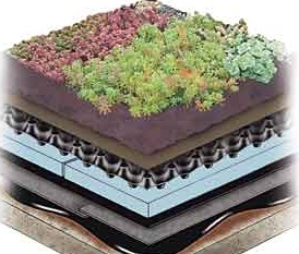 Hydrotech Extensive Vegetated Roof System