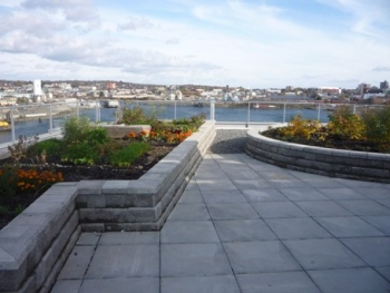 Dockside Green Synergy Roof Garden