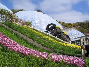 Eden Project Bee