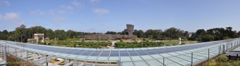 California Academy of Sciences Panorama from Roof of PVs