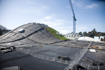 California Academy of Sciences Vegetated Roof Underlayment
