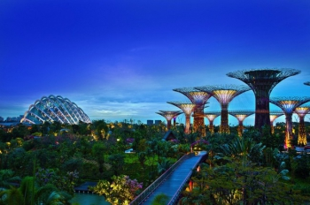 Gardens by the Bay Solar Supertrees Evening