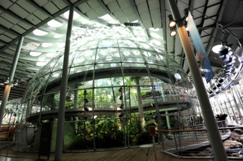 California Academy of Sciences Dome (USA)