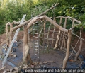 Woodland Home in Wales Assembling Trees
