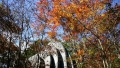 Hoshino Wedding Chapel Autumn