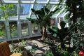 Amory Lovins Greenhouse Inside