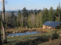 Tani Creek Farm Grows Plants, Power near Seattle