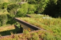 Mill Valley Vegetated Roof