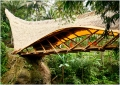 Bali Green School Kulkul Bridge 2