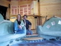 EcoSense House Owners