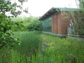 Earth Centre Wetland