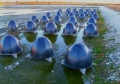 Bio-Domes Treat Wastewater Naturally