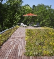 Bethesda Zero Energy Home Vegetated Roof