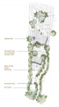 Ellis Residence Site Plan