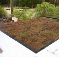 Ellis Residence Vegetated Roof Modules