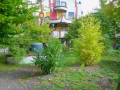 Hundertwasser Plochingen Green Roof