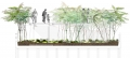 Highline Park Woodland Flyover Drawing