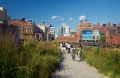 Highline Park Grasses