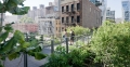Highline Park Greenery