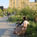 Highline Park above the Fray