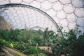 Eden Project Tropics Biome
