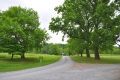 Poplar Forest Entry Road