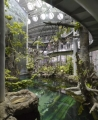 California Academy of Sciences Rainforest Interior