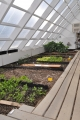 YMCA Solar Greenhouse Interior