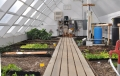 YMCA Solar Greenhouse Interior2