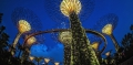 Solar Supertrees at Night