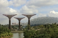 Solar Supertrees in Singapore Daytime