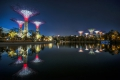 Solar Supertrees a Night by Darren Chin