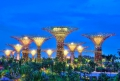 Singapore Solar Supertrees