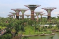 Gardens by the Bay Solar Supertrees Day
