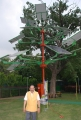 Solar Power Tree in India
