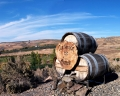 Ellensburg Winery Wine Barrels Sign