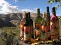 Ellensburg Winery Wine Selection